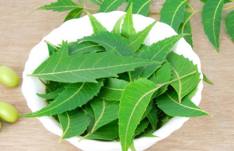 Neem reducing cancer risk