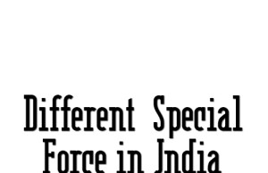 Special Task Force of India