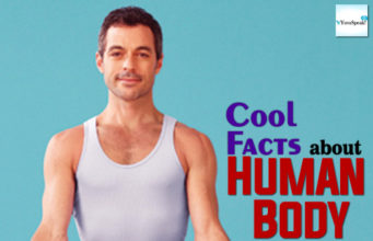 Cool Fact about Human Body